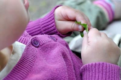 Kind sitzt in Buggy und spielt mit einem Blatt