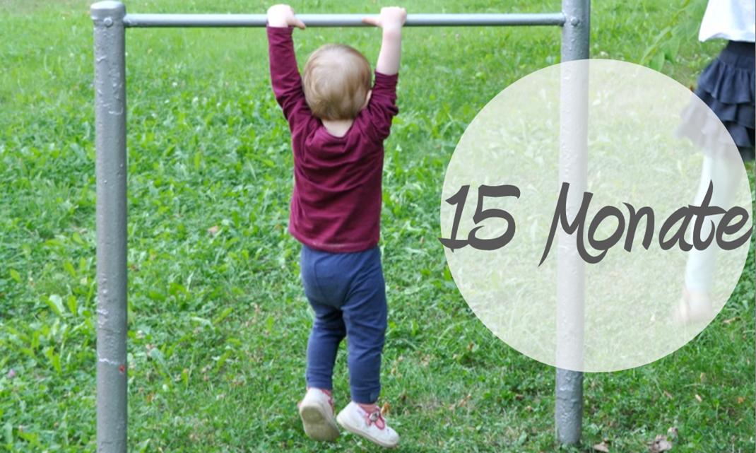 Entwicklung Kleinkind Stange baumeln 15 Monate