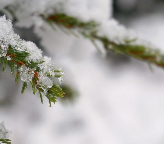 Kind barfuß im Schnee