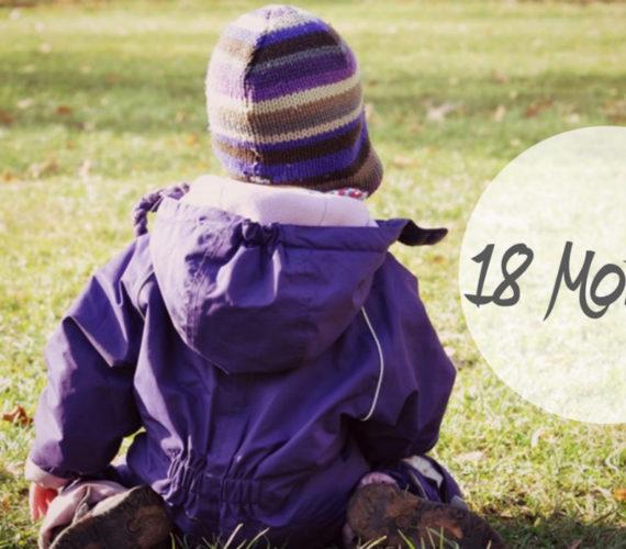 Entwicklung eines 18 Monate alten Kleinkindes